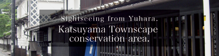 Sightseeing from Yuhara.Katsuyama Townscape conservation area.
