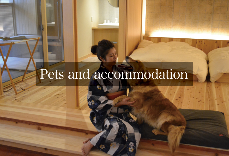 Pets and accommodation