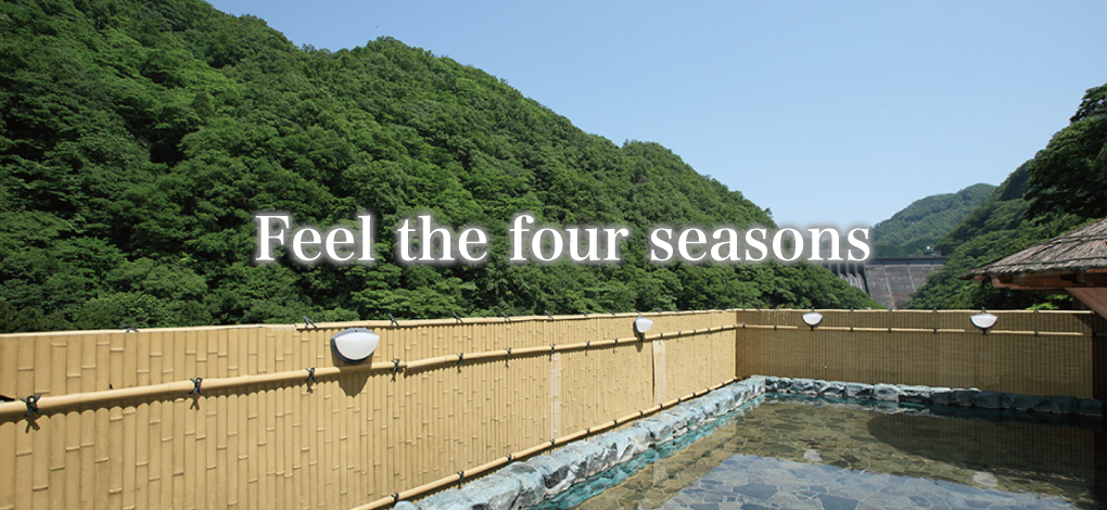 湯原国際観光ホテル 菊之湯 イメージ画像