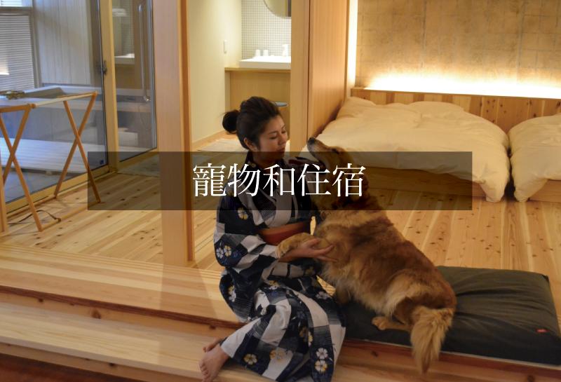 寵物和住宿